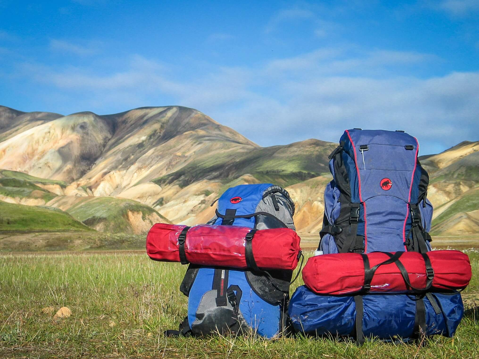 Two travel backpacks in a field.