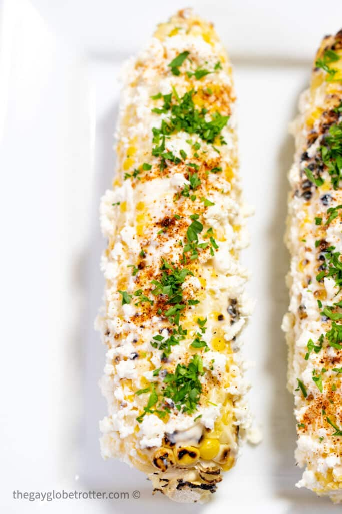 A cob of mexican street corn with cheese, chili powder, and cilantro.